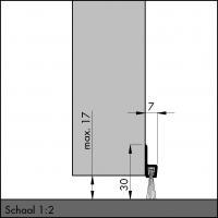 Пороговый щёточный уплотнитель IBS 31 100мм - фото